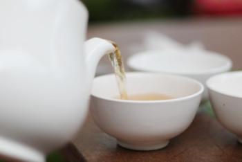 お茶の性質を知ろう