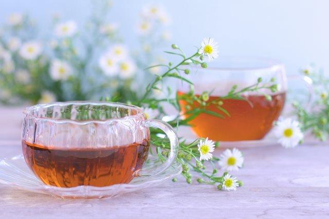 ノンカフェインのお茶を通販でお探しなら~お茶は品質が確かなものを~